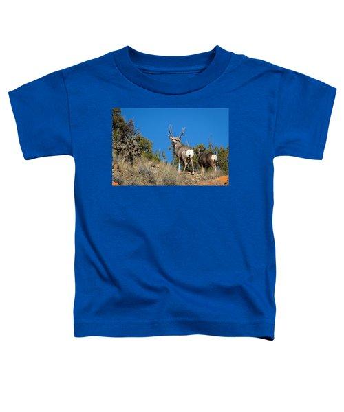 Mule Deer Buck Toddler T-Shirt