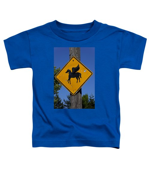 Pegasus Road Sign Toddler T-Shirt by Garry Gay