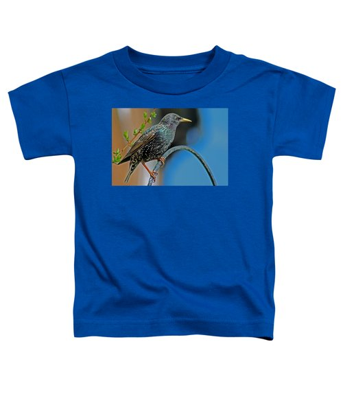 Starling Perched In Garden Toddler T-Shirt