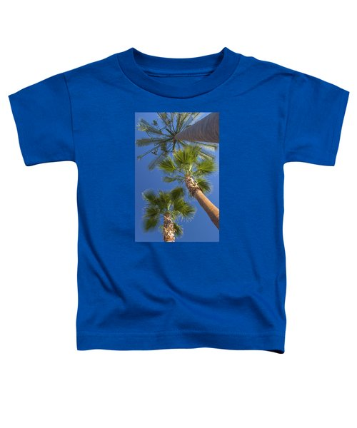 Which One Doesnt Belong 1 Toddler T-Shirt
