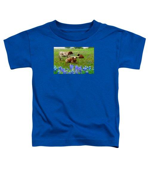 Da157 Winkin Blinkin And Nod Daniel Adams  Toddler T-Shirt