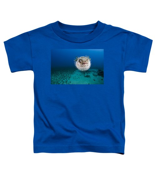 Spotted Porcupinefish II Toddler T-Shirt