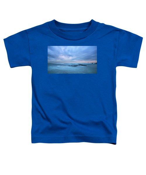 Silk Toddler T-Shirt