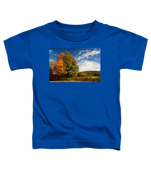 Autumn Tree On The Windham Path Toddler T-Shirt