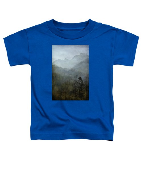 Beautiful Mist Toddler T-Shirt