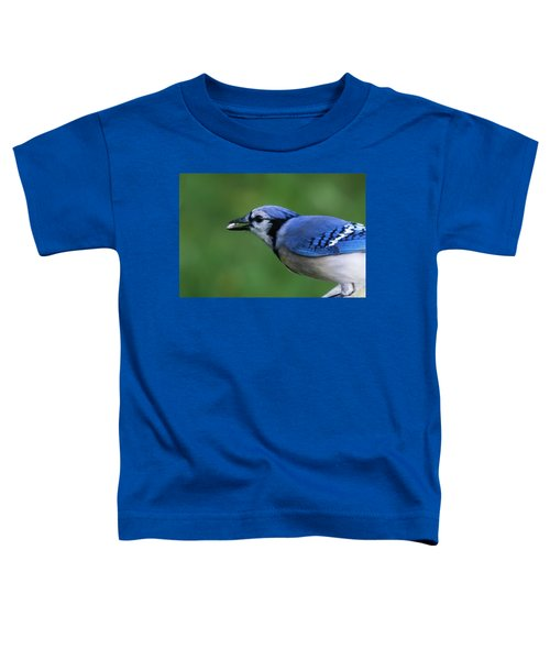 Blue Jay With Seed Toddler T-Shirt