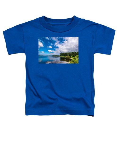 Blue Skies Toddler T-Shirt