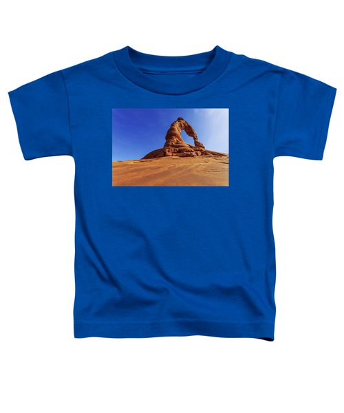 Delicate Perspective Toddler T-Shirt