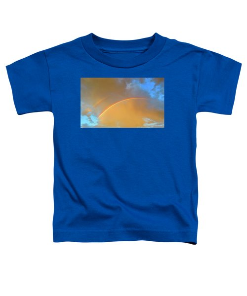 Double Rainbows In The Desert Toddler T-Shirt