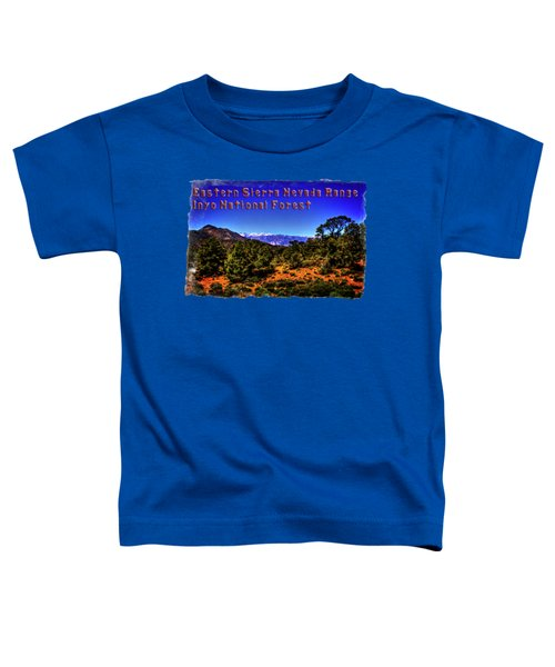 Eastern Sierras From The White Mountains Toddler T-Shirt