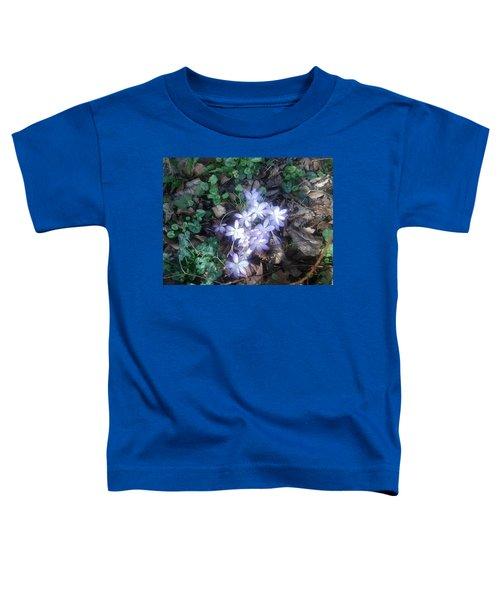 First Spring Treasures 2017 Toddler T-Shirt