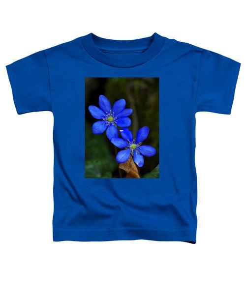 Hepatica Nobilis Toddler T-Shirt