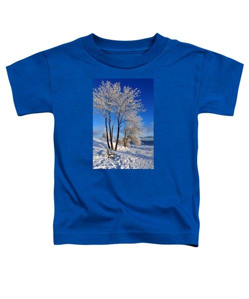 Hoarfrost  Toddler T-Shirt