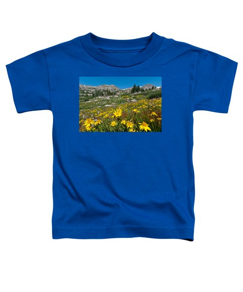 Indian Peaks Summer Wildflowers Toddler T-Shirt