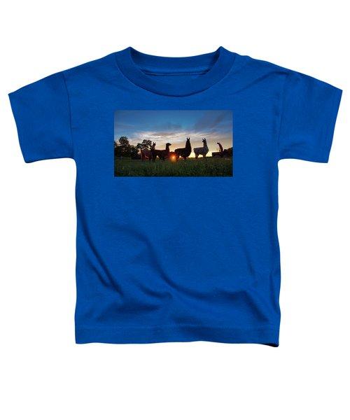 Llamas At Sunset Toddler T-Shirt