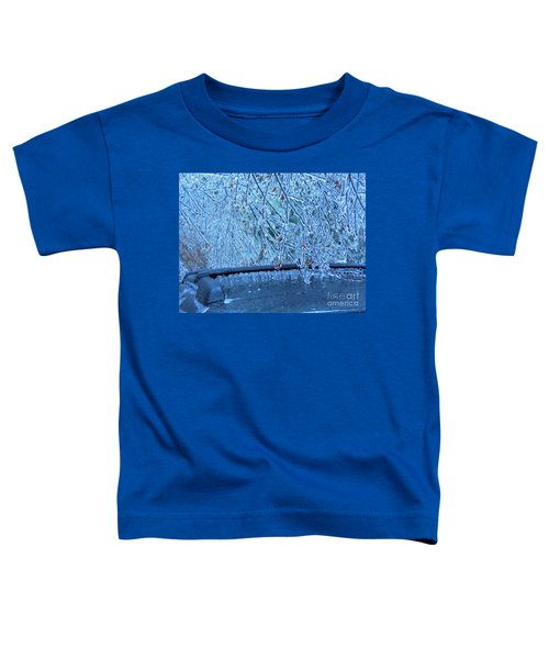 Malibu Icicles Toddler T-Shirt