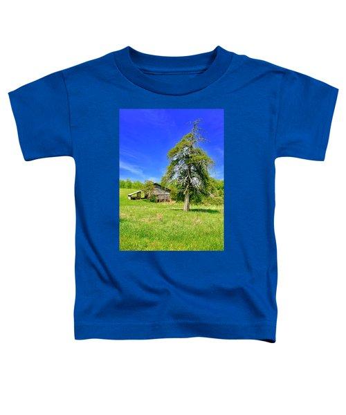 Old Barn, Smith Mountain Lake Toddler T-Shirt
