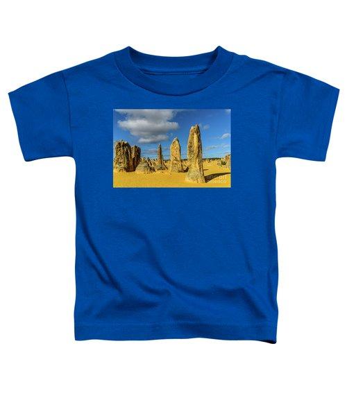 Pinnacles 6 Toddler T-Shirt