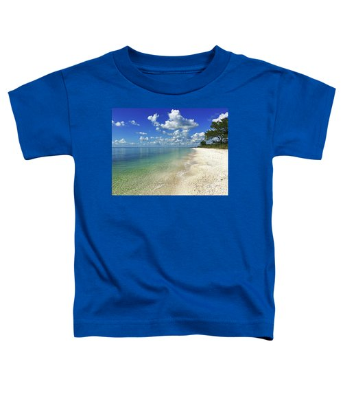 Puffy White Clouds At Delnor-wiggins Toddler T-Shirt