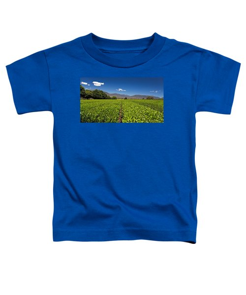 Ready For Harvest Toddler T-Shirt
