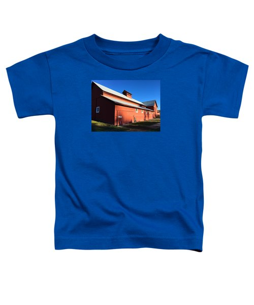 Red Barn, Blue Sky Toddler T-Shirt