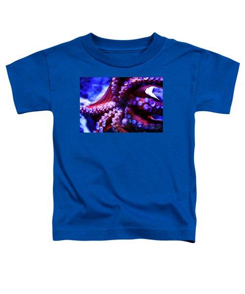 Scarlet Below Toddler T-Shirt