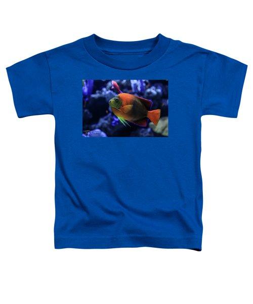 Showoff Toddler T-Shirt