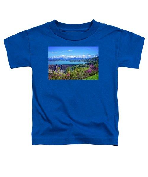 Springtime At Shasta Lake Dam Toddler T-Shirt