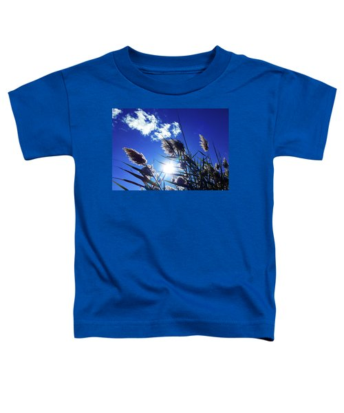 Sunburst Reeds Toddler T-Shirt