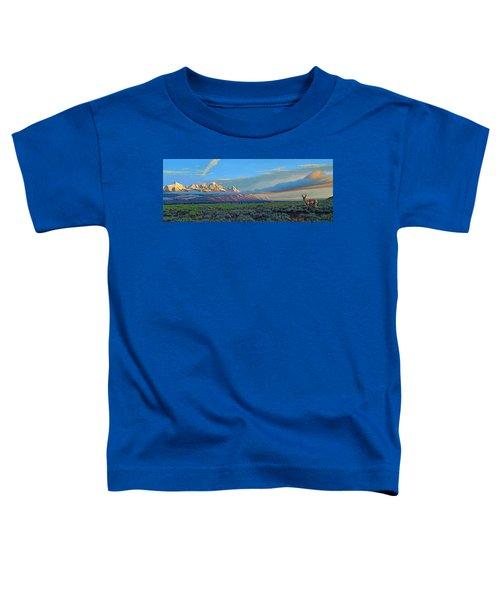 Teton Morning Toddler T-Shirt by Paul Krapf