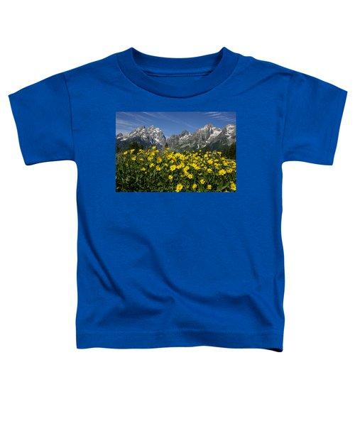Teton Spring Toddler T-Shirt