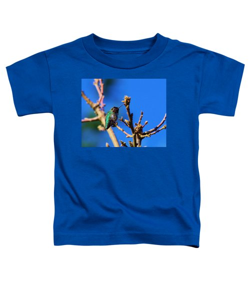 The First Hummingbird Toddler T-Shirt