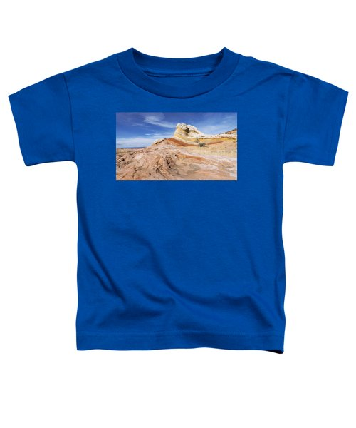 The Swirl Toddler T-Shirt