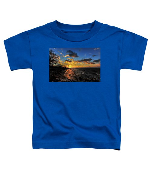 Winter Sunset On A Chesapeake Bay Beach Toddler T-Shirt