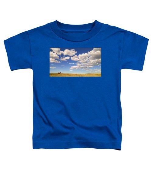 Cumulus Toddler T-Shirt