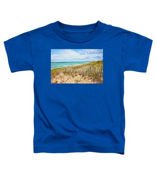 Lake Michigan Beachcombing Toddler T-Shirt