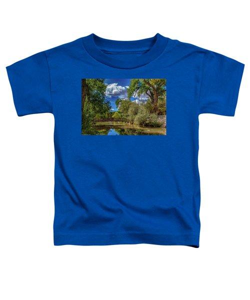 Sunrise Springs Toddler T-Shirt