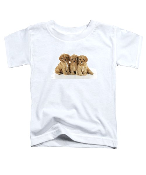 Cockapoo Puppy Dogs Toddler T-Shirt