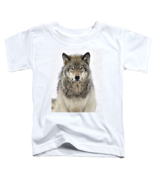 Timber Wolf Portrait Toddler T-Shirt
