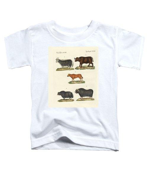 Various Kinds Of Oxen Toddler T-Shirt
