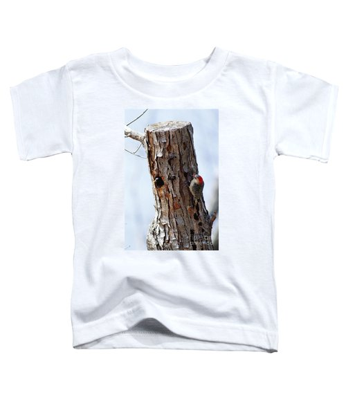 Woodpecker And Starling Fight For Nest Toddler T-Shirt by Gregory G. Dimijian