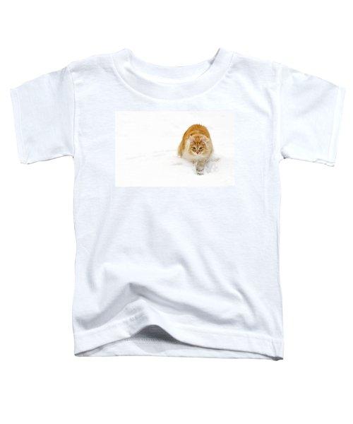 111230p310 Toddler T-Shirt