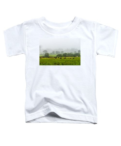 Cows At Rest Toddler T-Shirt