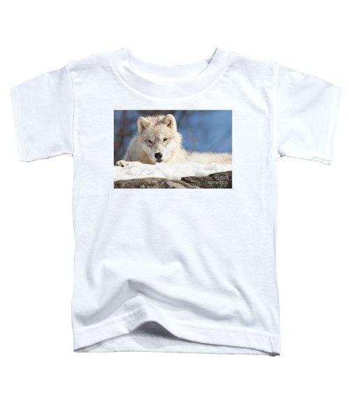 Arctic Wolf Pup Toddler T-Shirt