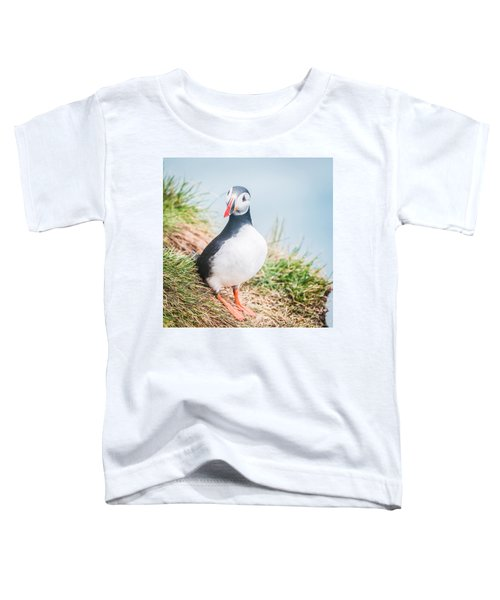 Atlantic Puffin Fratercula Arctica Toddler T-Shirt by Panoramic Images