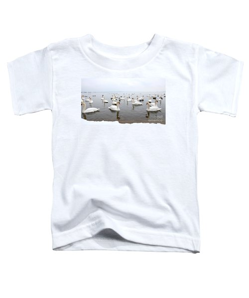 60 Swans A Swimming Toddler T-Shirt