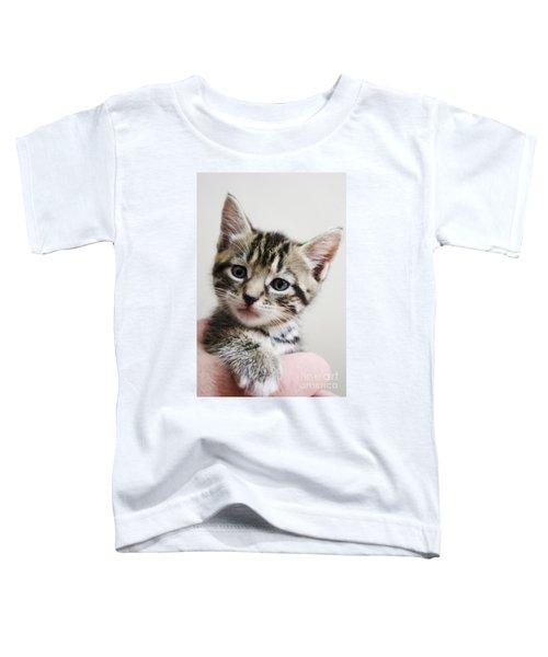 A Kittens Helping Hand Toddler T-Shirt