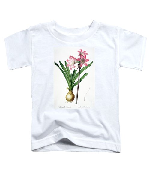 Amaryllis Belladonna From Les Liliacees Engraved By De Gouy Toddler T-Shirt