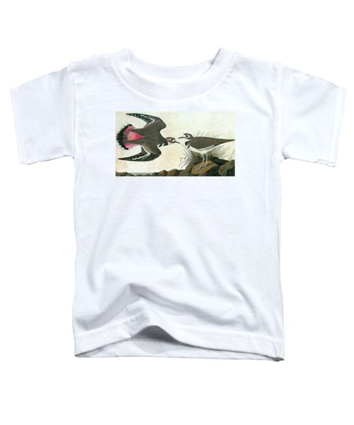 Audubon Killdeer Toddler T-Shirt