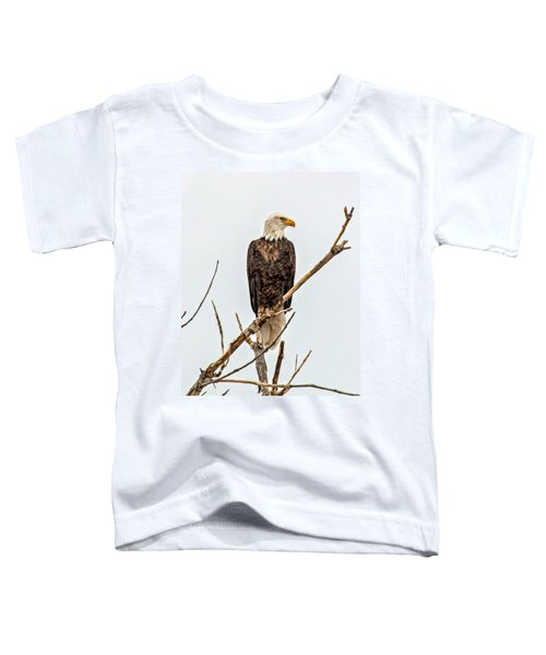 Bald Eagle On A Branch Toddler T-Shirt